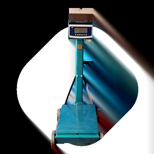 Balanza Electromecánica Saguita 500 kg